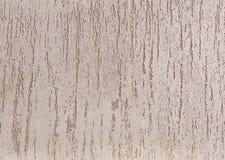 Fondo strutturato della parete ruvida beige Stucco di Abstact Struttura di gesso sulla parete Immagine Stock Libera da Diritti