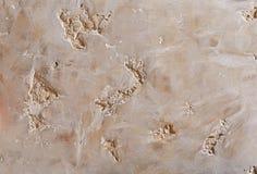 Fondo strutturato della parete ruvida beige Stucco di Abstact Struttura di gesso sulla parete Fotografia Stock Libera da Diritti