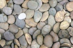 Fondo strutturato della roccia del fiume. Noleggi, fine su. Immagine Stock Libera da Diritti