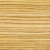 Fondo strutturato di legno dell'albero di acero Fotografia Stock Libera da Diritti