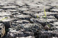 Fondo strutturato di superficie della Terra incrinata asciutta Fotografia Stock Libera da Diritti