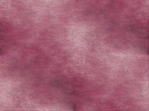 Fondo strutturato rosa scuro e molle Fotografia Stock