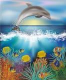 Fondo subacuático con el delfín y los pescados tropicales, vector Foto de archivo libre de regalías