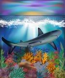 Fondo subacuático con el tiburón, vector Fotografía de archivo