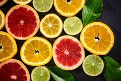 fondo succoso della frutta dalle varie fette di agrume Fotografia Stock Libera da Diritti