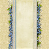 Fondo superbo d'annata con pizzo ed i fiori blu Fotografia Stock Libera da Diritti