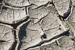 Fondo/textura agrietados del fango Imágenes de archivo libres de regalías