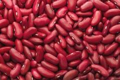 fondo, textura de habas rojas en una dispersión de las legumbres de la comida Fotos de archivo libres de regalías
