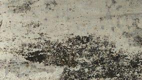 Fondo-textura de la textura del Grunge del fondo concreto del piso para el extracto de la creación fotografía de archivo libre de regalías