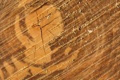 Fondo, textura de la madera aserrada imagenes de archivo