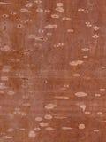 Fondo, textura de madera, beige, marrón, puntos Imagenes de archivo