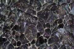 Fondo, textura - druso de los cristales no tratados de la amatista Foto de archivo libre de regalías