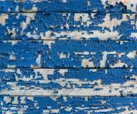 Fondo, textura, el panel de madera Foto de archivo libre de regalías
