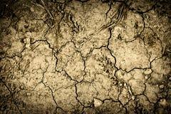 Fondo Textured de la tierra seca agrietada Fotos de archivo
