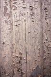 Fondo texturizado áspero, de madera, agrietado Imágenes de archivo libres de regalías