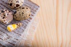 Fondo texturizado de la primavera con los pequeños huevos de codornices Productos de Eco Formato horizontal Imagen de archivo libre de regalías