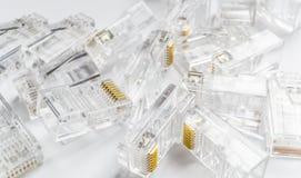 Fondo trasparente dei connettori di Internet rj-45 di Ethernet su bianco Fotografie Stock