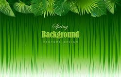 Fondo tropical brillante con las plantas de la selva Wi exóticos del modelo ilustración del vector