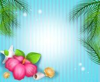 Fondo tropical con la playa y decoración tropical Imágenes de archivo libres de regalías