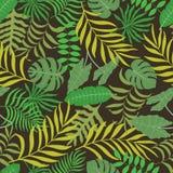 Fondo tropical con las hojas de palma Imágenes de archivo libres de regalías