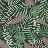 Fondo tropical con las hojas de palma Foto de archivo libre de regalías