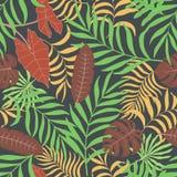Fondo tropical con las hojas de palma Fotografía de archivo