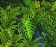 Fondo tropical de la pintura al óleo de la selva tropical Fotografía de archivo libre de regalías