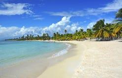 Fondo tropical de la playa Imagenes de archivo