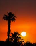 Fondo tropical de la salida del sol de la puesta del sol de la isla Fotos de archivo