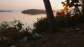 Fondo tropical de la selva con las siluetas de la palmera en la salida del sol metrajes