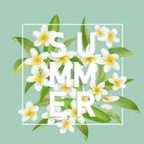 Fondo tropical de las flores y de las hojas Diseño del verano Fotos de archivo libres de regalías