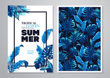 Fondo tropical de las hojas de palma Imagenes de archivo