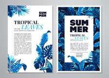 Fondo tropical de las hojas de palma Fotos de archivo