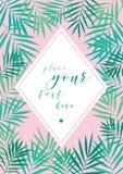 Fondo tropical de las hojas de palma Fotografía de archivo libre de regalías