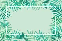 Fondo tropical de las hojas de palma con el marco Imágenes de archivo libres de regalías