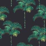 Fondo tropical de las palmeras ilustración del vector