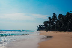 Fondo tropical del día de fiesta de las vacaciones - playa idílica del paraíso Sri Lanka Imagen de archivo libre de regalías