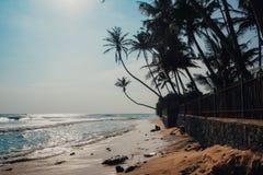 Fondo tropical del día de fiesta de las vacaciones - playa idílica del paraíso Sri Lanka Fotos de archivo