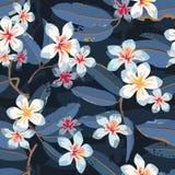 Fondo tropical del estampado de flores de la flor inconsútil Fotos de archivo