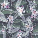 Fondo tropical del estampado de flores de la flor inconsútil Foto de archivo