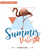 Fondo tropical Diseño del verano Gráfico de vector de la moda de la camiseta de la muchacha Foto de archivo libre de regalías