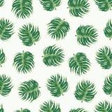 Fondo tropical inconsútil del estampado de flores Imagen de archivo