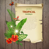 Fondo tropicale Immagine Stock
