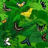 Fondo tropicale africano della giungla della foresta pluviale di vettore senza cuciture con le farfalle illustrazione vettoriale