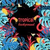 Fondo tropicale con le foglie ed il fenicottero Fotografie Stock