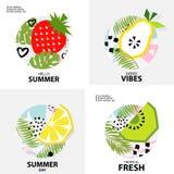 Fondo tropicale d'avanguardia con frutta, illustrazione di vettore Immagine Stock