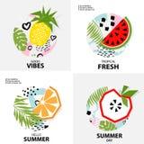 Fondo tropicale d'avanguardia con frutta, illustrazione di vettore Fotografie Stock Libere da Diritti