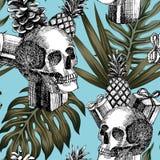 Fondo tropicale del cono dell'ananas dei regali del cranio Fotografie Stock Libere da Diritti