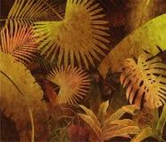 Fondo tropicale della pittura a olio della foresta pluviale Fotografie Stock Libere da Diritti