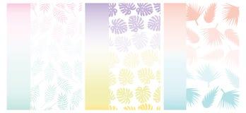 Fondo tropicale di estate per le carte con le pendenze ed il modello delle foglie tropicali Priorità bassa esotica Fotografie Stock Libere da Diritti